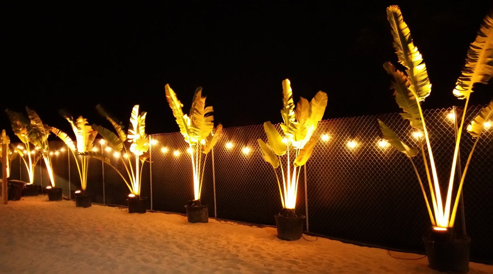 LED Festoon String Lights